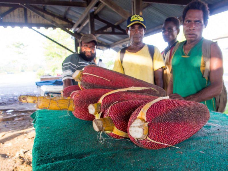 Manfaat buah merah asal papua